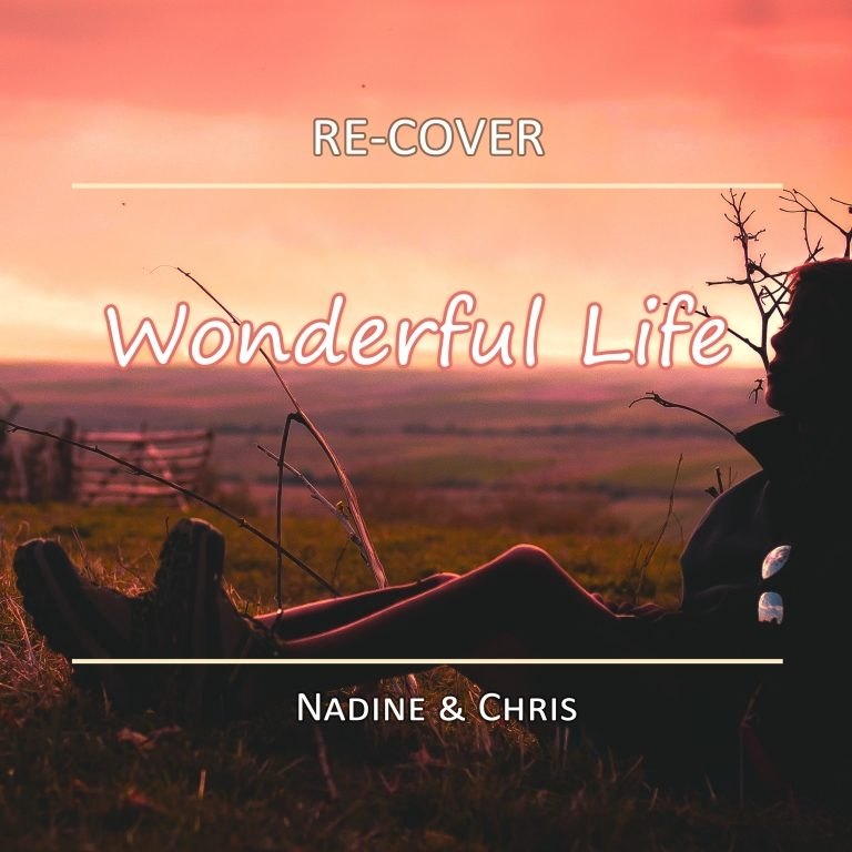 Wonderful Life von Re-Cover. Single #2 in 2020.