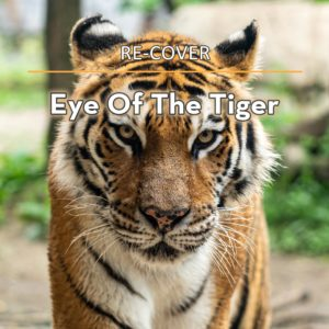 Eye Of The Tiger von Re-Cover.